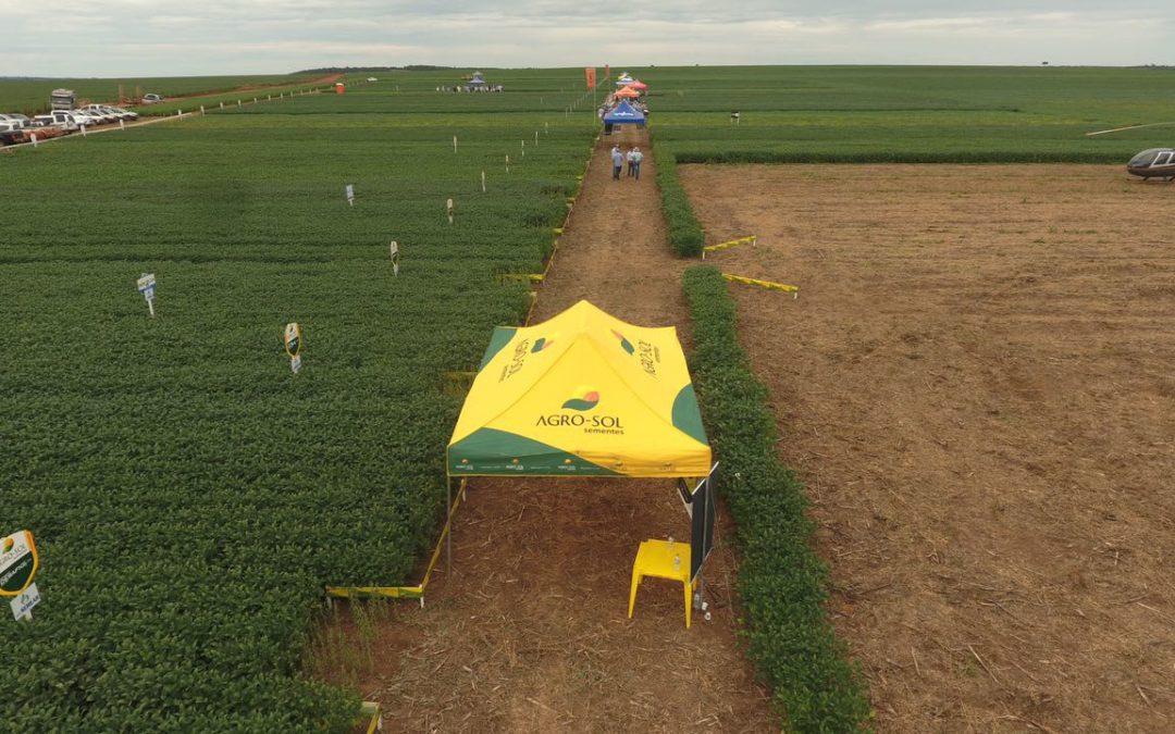 Agro-Sol apresenta portfólio durante dia de campo da Agro Semear em Primavera do Leste