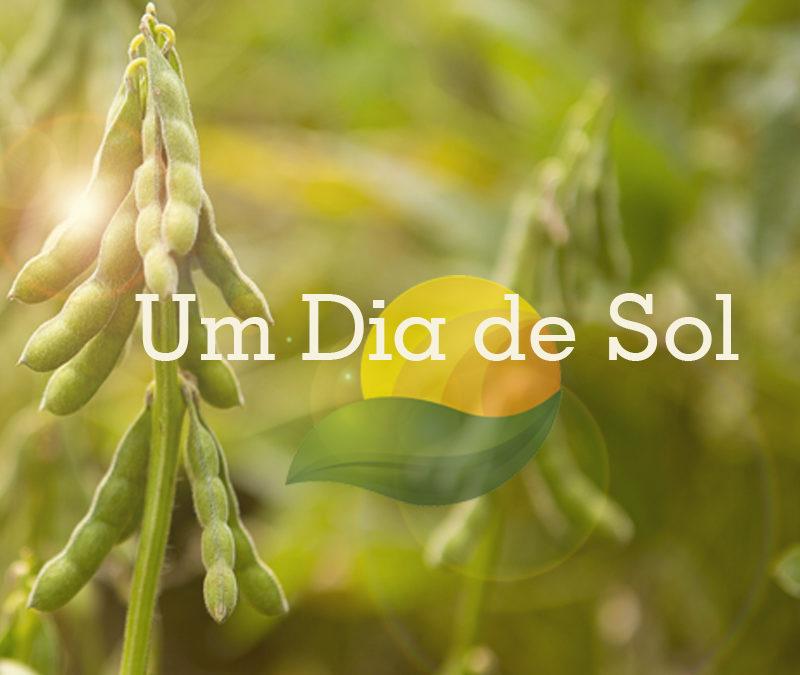 Agro-Sol Sementes realiza dia de campo para apresentar novidades para a safra 2017/2018