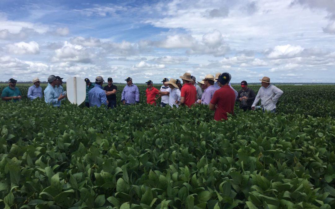 Agro-Sol Sementes realiza 2ª Tour de Lavoura no Nortão de MT