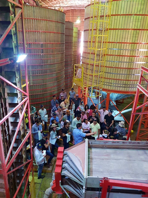 Alunos da Unic realizam visita técnica à Agro-Sol