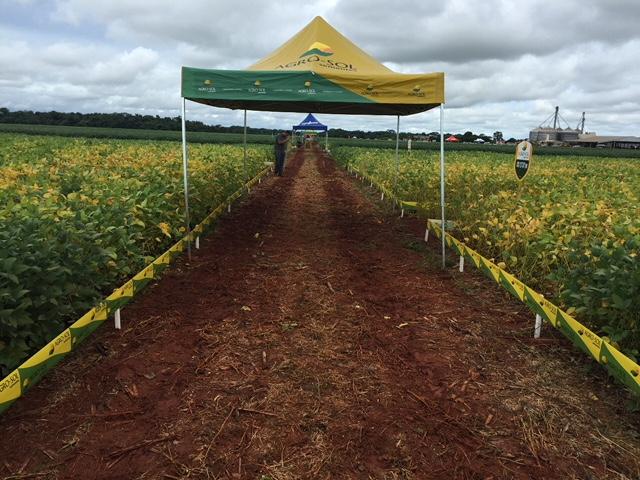 Agro-Sol expõe cultivares em Porto Alegre do Norte