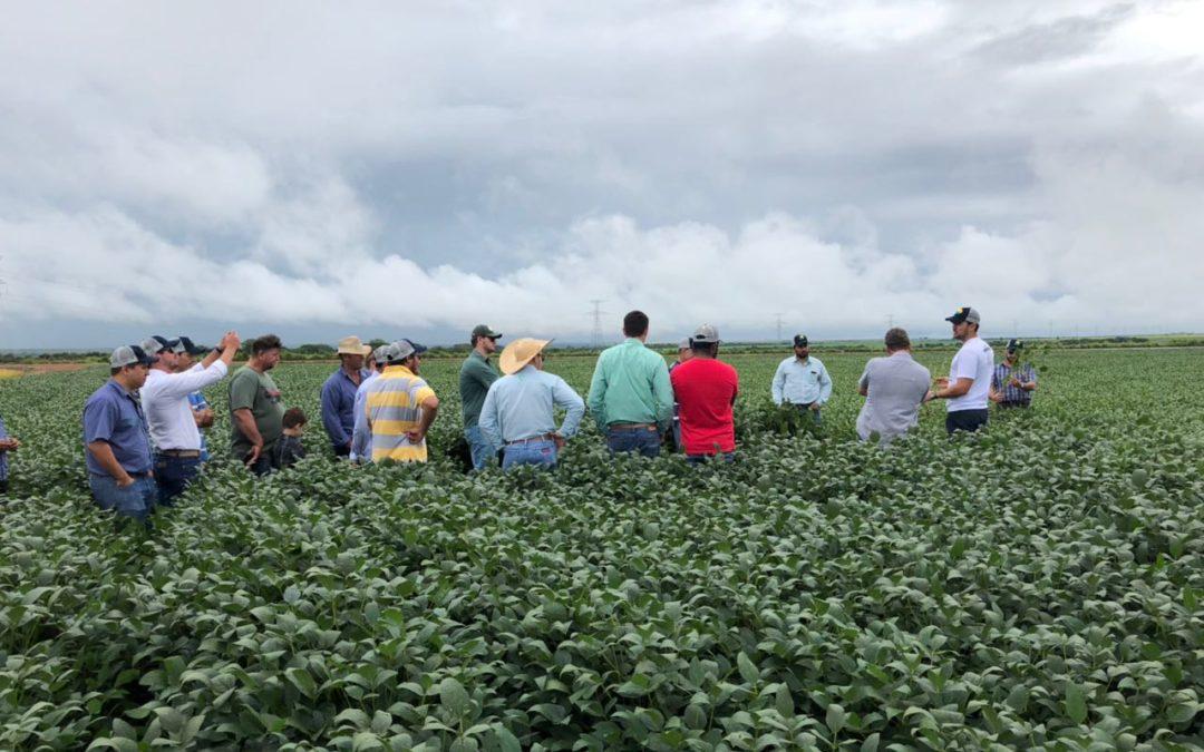 Agro-Sol reúne produtores em Tour de Campo em Santo Antônio do Leste