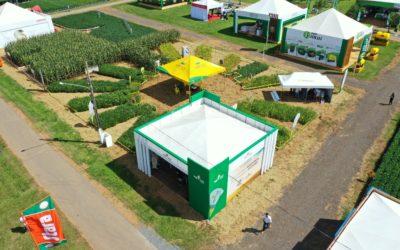 Temporada de feiras: prazeroso contato com o agricultor e público em geral