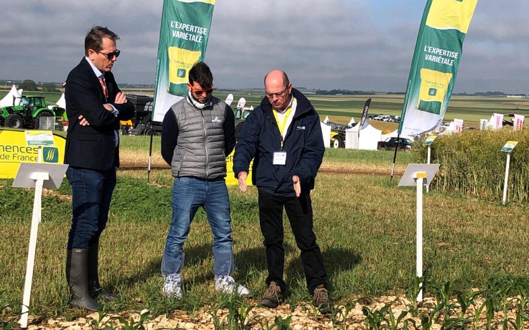 Agro-Sol na França: força regional, qualidade internacional