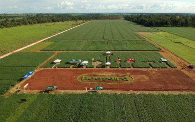 Agro-Sol apresenta cultivares em evento em Rondônia