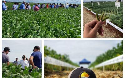 Agro-Sol realiza Tours de Campo e apresenta agenda de eventos