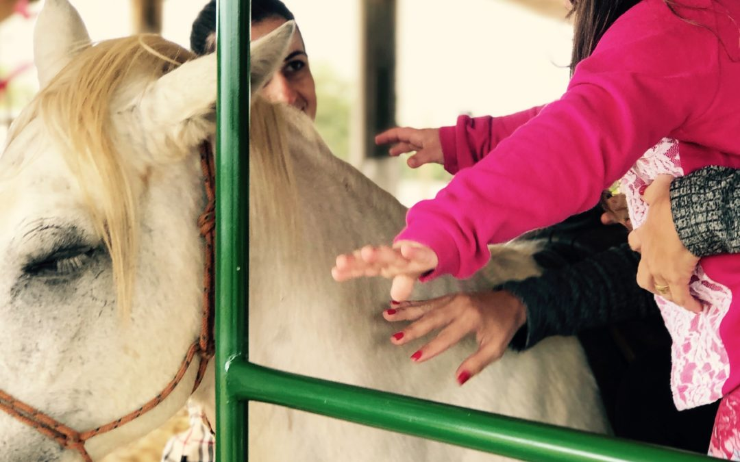 Agro-Sol apoia projeto de Equoterapia em Campo Verde