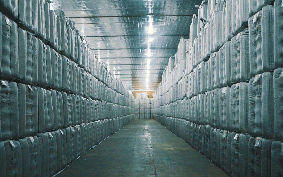 O armazenamento da semente de soja interfere diretamente na sua qualidade e produtividade.